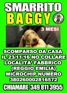 SMARRITO BAGGY