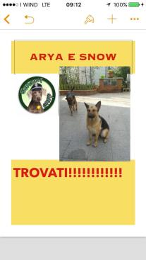 RITROVATI ARYA E SNOW