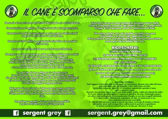 DEPLIANT SERGENT GREY INTERNO.jpg