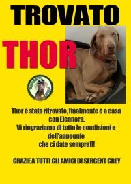 trovato thor